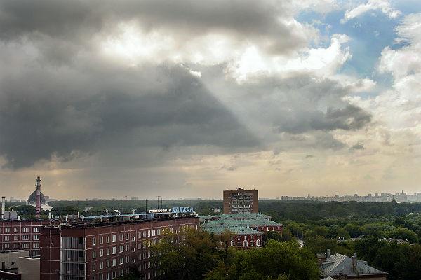 Дождь идоплюс 20 градусов ожидают граждан региона ввоскресенье