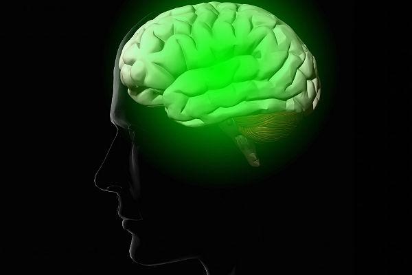 Русские ученые сделают нейрочип для замены поврежденных участков мозга