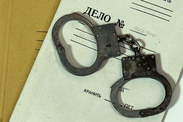 СКвозбудил уголовное дело против лидера протестного движения парка «Торфянка»