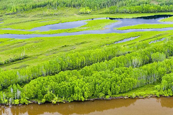 «Дальневосточный гектар» собираются увеличить в10 раз
