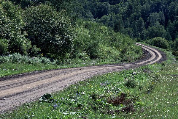 ФСБ: под Смоленском контрабандисты отремонтировали дорогу для ввоза санкционных продуктов