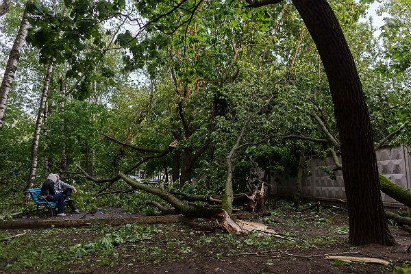 СК сказал о 15 погибших из-за урагана в столице иПодмосковье