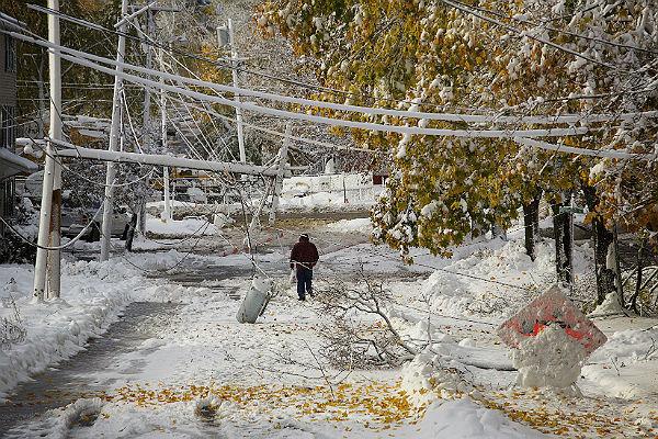 Фотографии салата снежная буря
