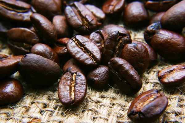 Уганда планирует поставлять в Курскую область кофе, чай и какао-бобы