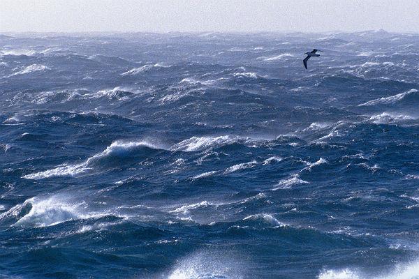 Экипаж попавшего вшторм русского судна спасли уберегов Турции