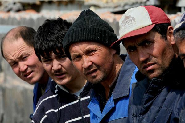 Путинцам мешали: Стая таджико-узбеков избила мешающего им бухать коменданта стройки в Кудрово