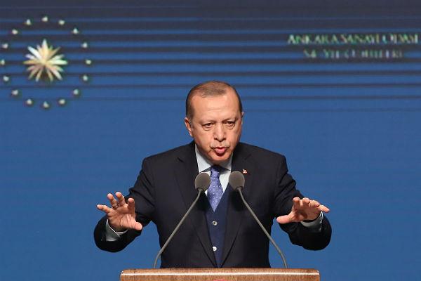 Эрдоган: турецкая армия освободит Африн оттеррористов