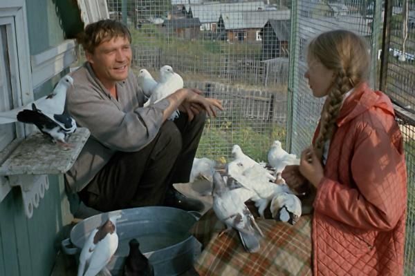 любовь и голуби картинки из фильма
