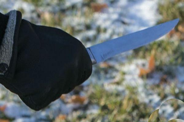 ВБашкирии нетрезвый шофёр ранил ножом инспектора ДПС