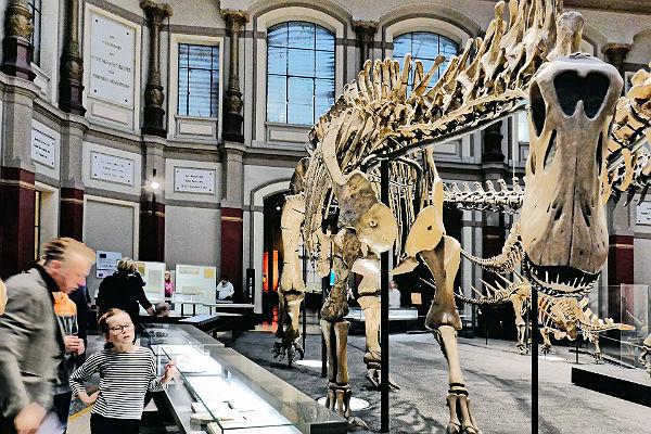 Динозавры погибли оттемноты исерной кислоты— Ученые