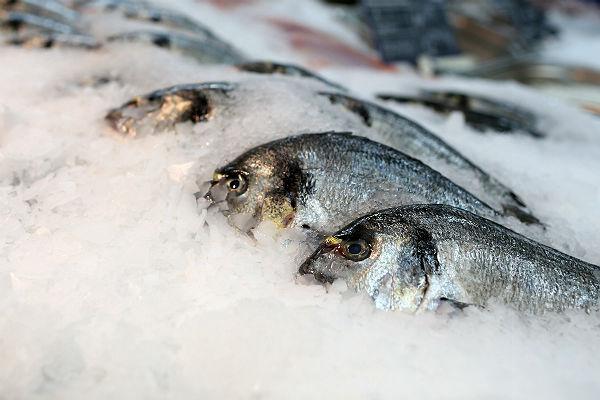 В РФ воспрещены госзакупки мяса, рыбы, риса из-за рубежа