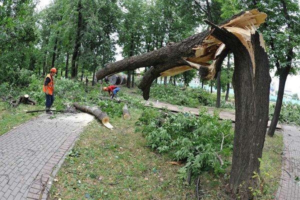 В Москве объявили очередное штормовое предупреждение